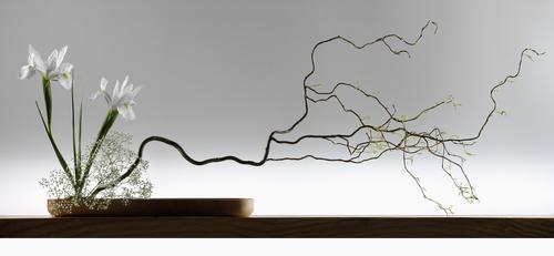 Características que definen el Ikebana tradicional