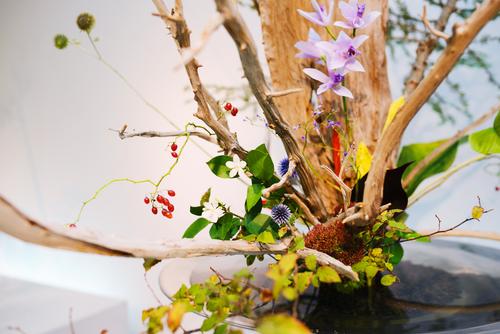 Ikebana en exteriores