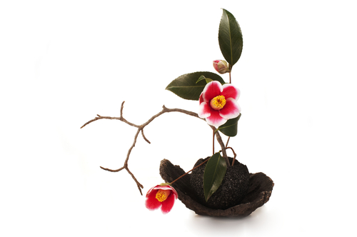 Vinilos decorativos Ikebana