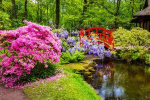 cuadros de jardines japoneses