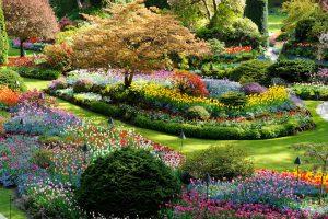imagenes jardines japoneses