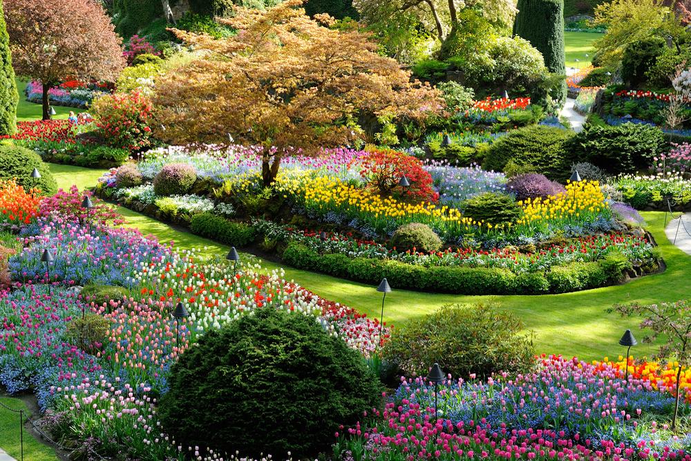 C mo son los jardines japoneses for Jardines bellos fotos