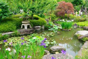 jardines estilo japones