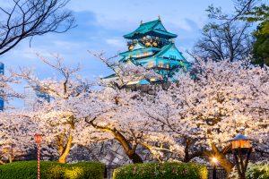 jardines interiores japoneses