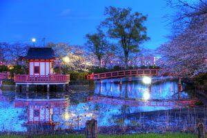 jardines japoneses caracteristicas