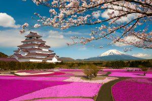 jardines japoneses en miniatura