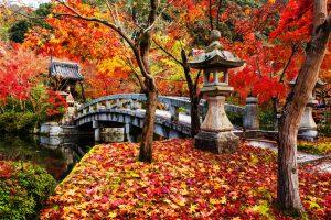 jardines japoneses en terrazas