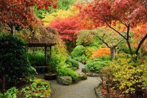 jardines japoneses modernos