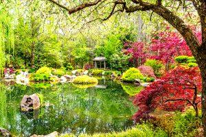 jardines pequeños japoneses