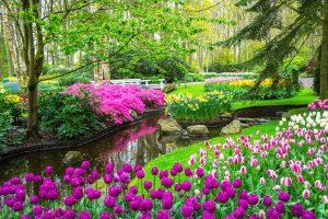 jardines zen japoneses