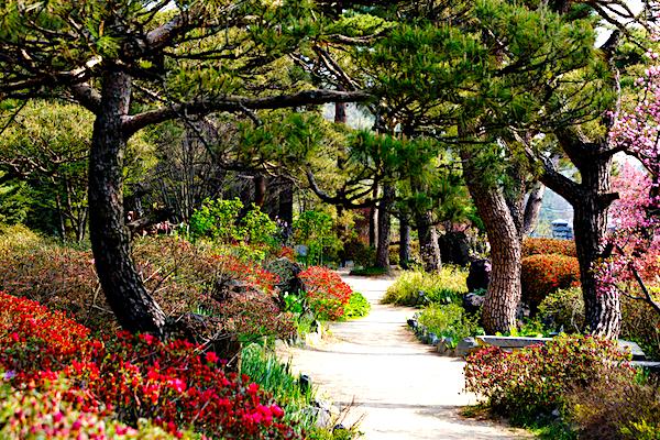 C mo son los jardines japoneses - Jardines japoneses zen ...
