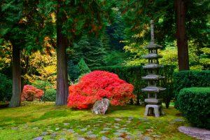 paisajes jardines japoneses
