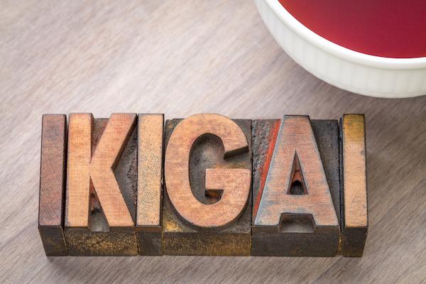 significado ikigai