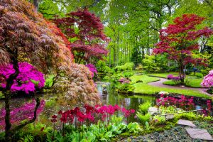 tipos de jardines japoneses